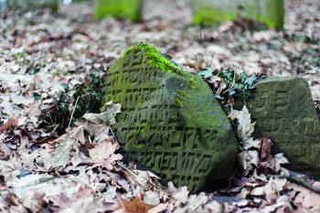 Spuren jüdischen Lebens an der Oder. Foto: Adam Czerneńko